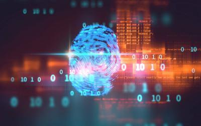 Frost & Sullivan: Tighter Border Security Measures Increases Growth Opportunities for Biometrics in the Public Segment