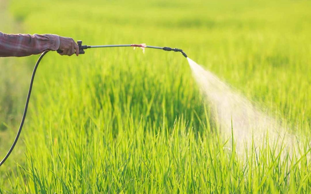 Global Bioherbicides Market Booming with CAGR of 21.3% between 2018 and 2023