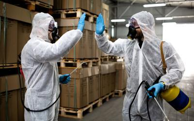 Pest Control: A Basic Requirement to Ensure Food Safety and Security