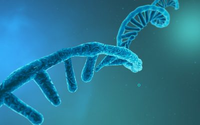Pharma and Biotech to Highly Invest in RNA Therapeutics to Expedite Research & Development across the Globe